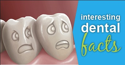 dental_facts
